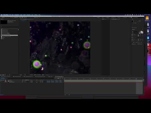 After effects 2021 display bug