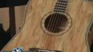 Washburn Acoustic Guitar D46SP Demo