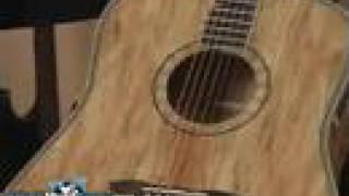 Washburn Acoustic Guitar D46SP Demo
