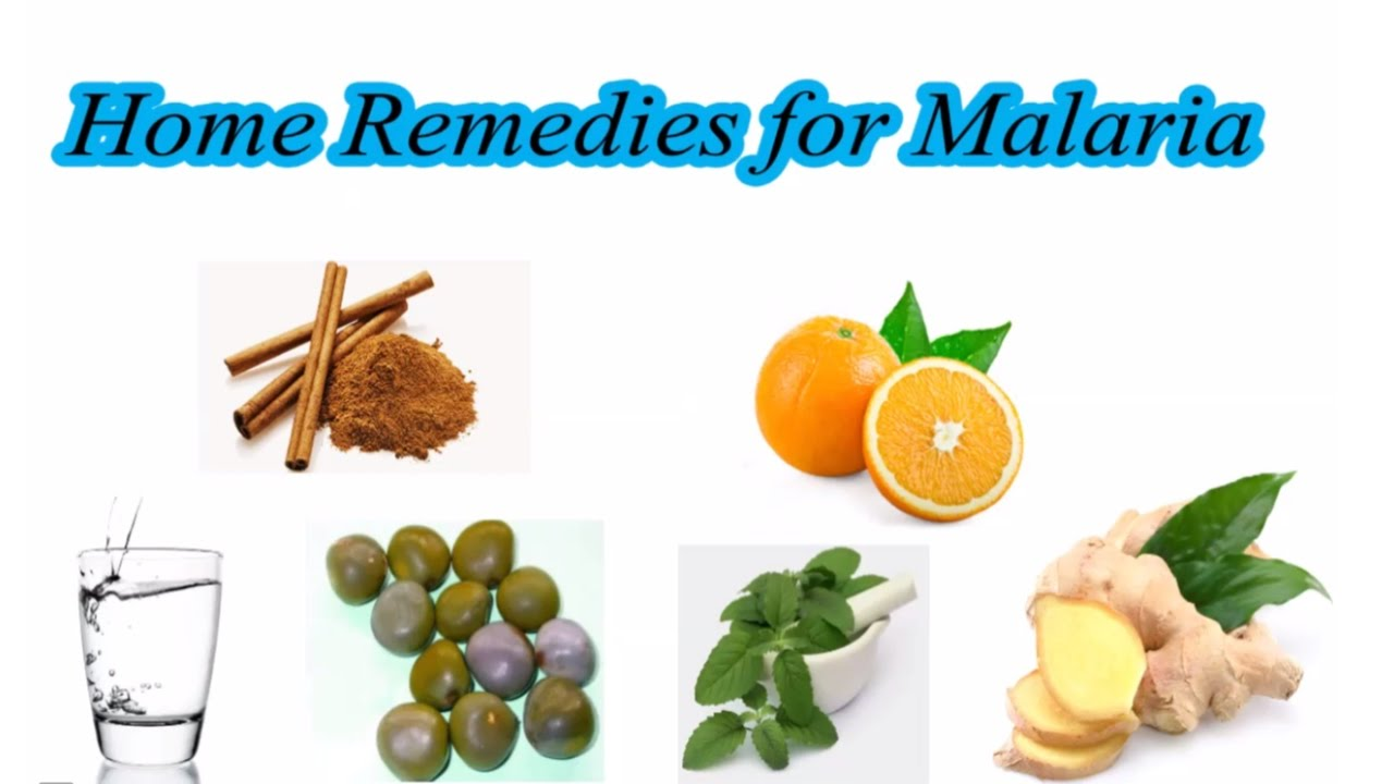 Watch How to Treat Malaria video