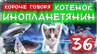 КОРОЧЕ ГОВОРЯ, КОТЕНОК - ИНОПЛАНЕТЯНИН 36 [От первого лица] Бездомный котенок Лайки