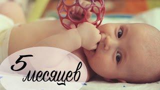 Развитие ребенка в 5 месяцев - MНОГО МИШУТКИ. - Ollysadvice