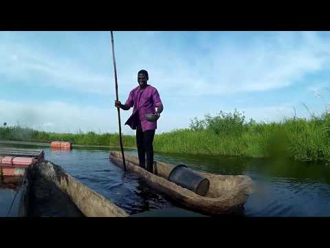 Natural Fish Farming Project in Togo