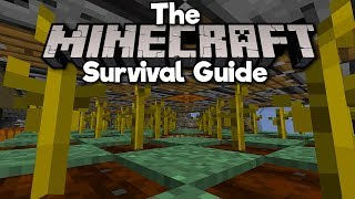 1.14 Lossless Pumpkin Farm! ▫ The Minecraft Survival Guide (Tutorial Let's Play)[Part 243]