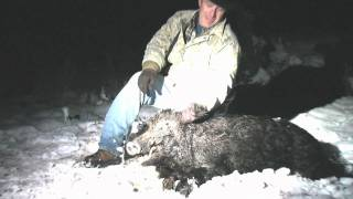 NITESTIK Hog Hunt - Snowing