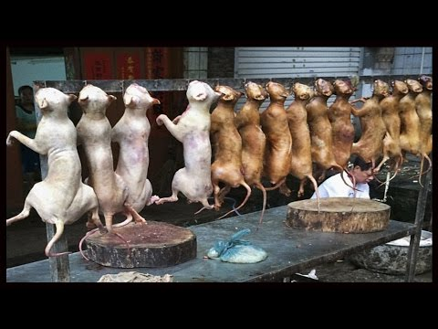 The Yulin Dog Meat Festival In China