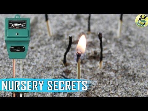 WOOD ASH & BIO-CHAR - Nursery Secrets and Best Fertilizers | Wood Ash for Plants - Alkaline Soil