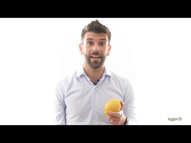 TERRA ORTI TV - NUTRIZIONISTA - Limone