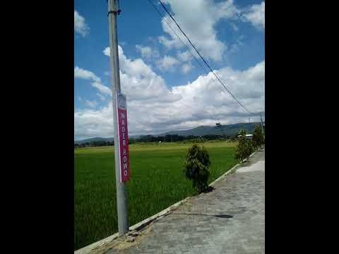 Rawa Pening, Semarang Central Java-Between Mountain Merbabu,Telomoyo,Ungaran