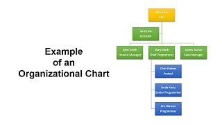 How to Create Organizational Chart in PowerPoint | Step-by-Step Tutorial