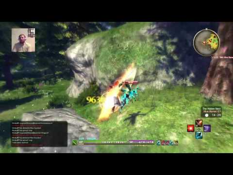 Sao HR farming 101 insectoid goldwings