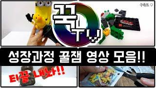 꾹TV 성장과정 영상 꿀잼 모음!!