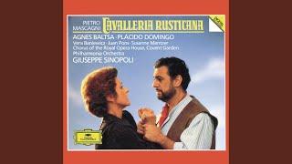 "Mascagni: Cavalleria rusticana - ""Ah! lo vedi"" (Duetto)"