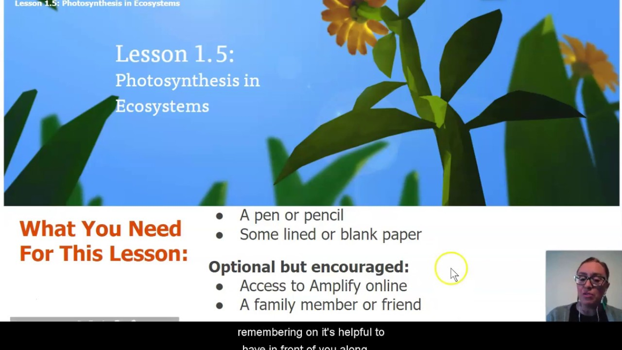 medium resolution of Science Grade 7: Matter and Energy in Ecosystems - Chapter 1