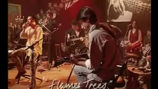 Jimmy Barnes - Flame Trees