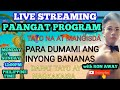LIVE|PAANGAT PROGRAM|HELPING SMALL YOUTUBER|#RON