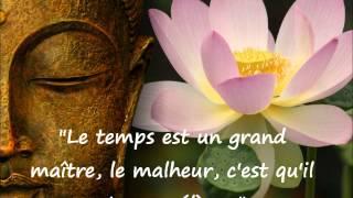citations du Bouddha.wmv