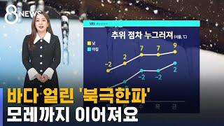 [날씨] 바다마저 얼린 '북극 한파', 모레까지 이어져요 / SBS