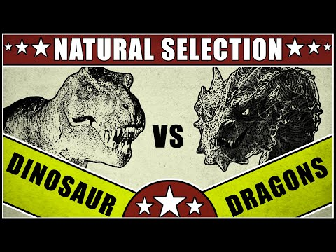 Dinosaurs vs. Dragons (Natural Selection)