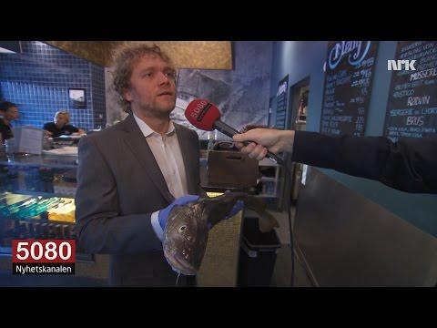 Rapport fra oljenæringen: Norsk olje stimulerer torskens skjeggvekst