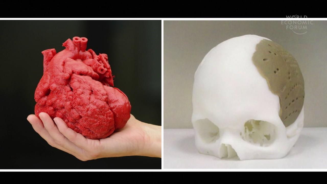 Mimicking The Growth Of Human Organs Through 3d Bio Printing Adam