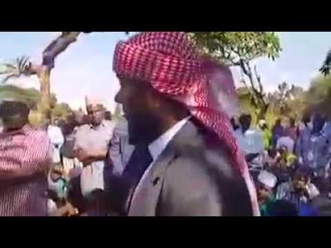 Sheikh nuridin kishik