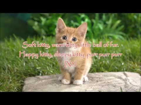 Soft Kitty - Matt LeDoux and Magick Lyrics