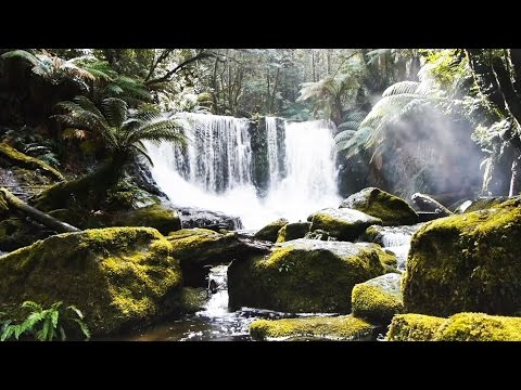 Relaxing Concentration Music: Study, Work – Focus – Soothing HD Nature Video