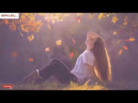 ❤ New Lovely Feeling Love Status Video | Very Emotional Lines Status | Hindi Shayari WhatsApp Status