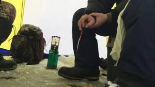 Рыбалка на Ямале первый лед. Бешеный клев сороги.(, 2016-10-30T12:49:57.000Z)