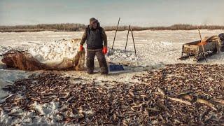 Рыбалка на окуня с хантами Огромные щуки 2 тонны рыбы Крайний Север C полем Лучшие выпуски