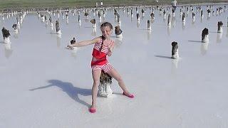 СОЛЕНОЕ ОЗЕРО БАСКУНЧАК АСТРАХАНСКАЯ ОБЛАСТЬ  МЕРТВОЕ ОЗЕРО Salt Lake Baskunchak Russian Dead Sea(, 2016-08-15T07:30:00.000Z)