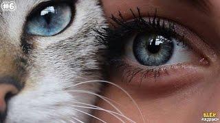 Почему у людей глаза разного цвета?