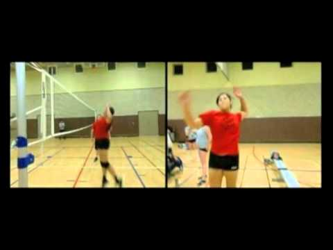 biomechanics volleyball Male volleyball players were selected as the subjects for this study from aligarh,   the biomechanics of jump serve has been studied before by coleman (1997).