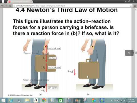 Physics Chapter 4 Forces and Motion