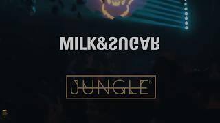 JUNGLE 8 - MILK & SUGAR PERFORMANCE Video