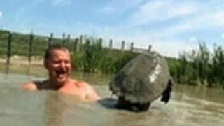 Bare-handing a Snapping Turtle | Call of the Wildman