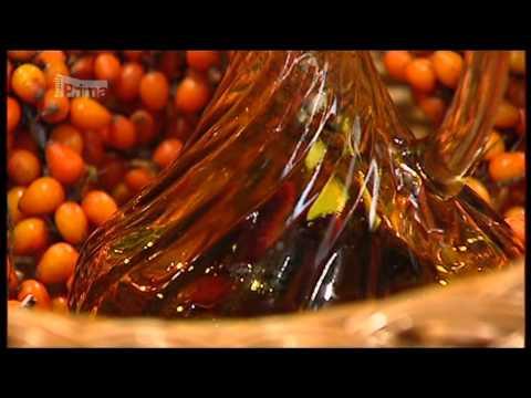 Olej z Rakytníku   omega7 antioxydant pro pružnost cév