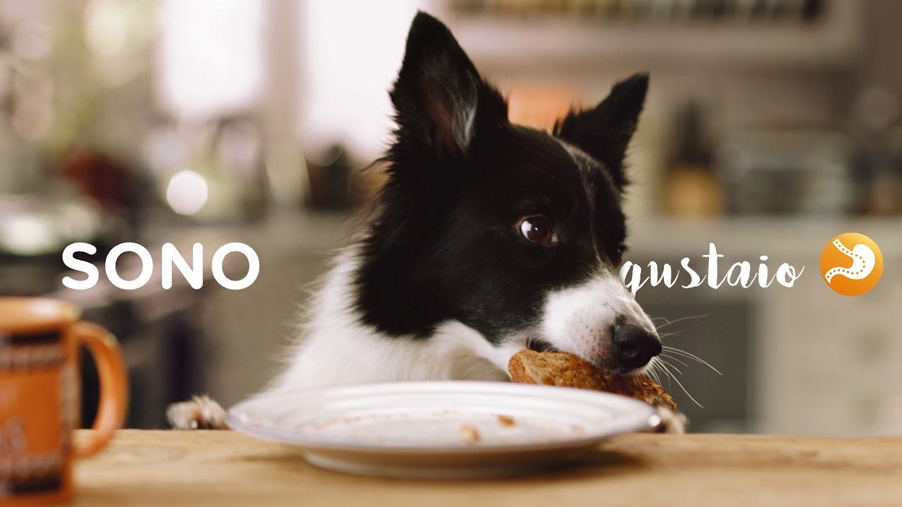 iams recensioni di controllo del peso del cane