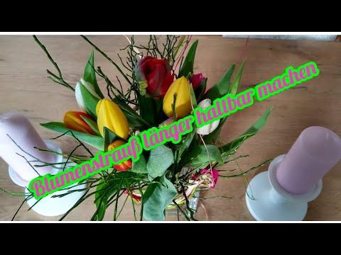 Blumen Langer Haltbar Machen Blumenstrauss Langer Frisch Halten Schnittblumen Youtube