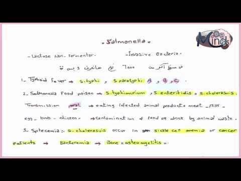 Сальмонеллёзы — Википедия