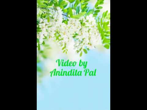 Saradin Bhebe Tomar Kotha(Subhamita)mp3 thumbnail