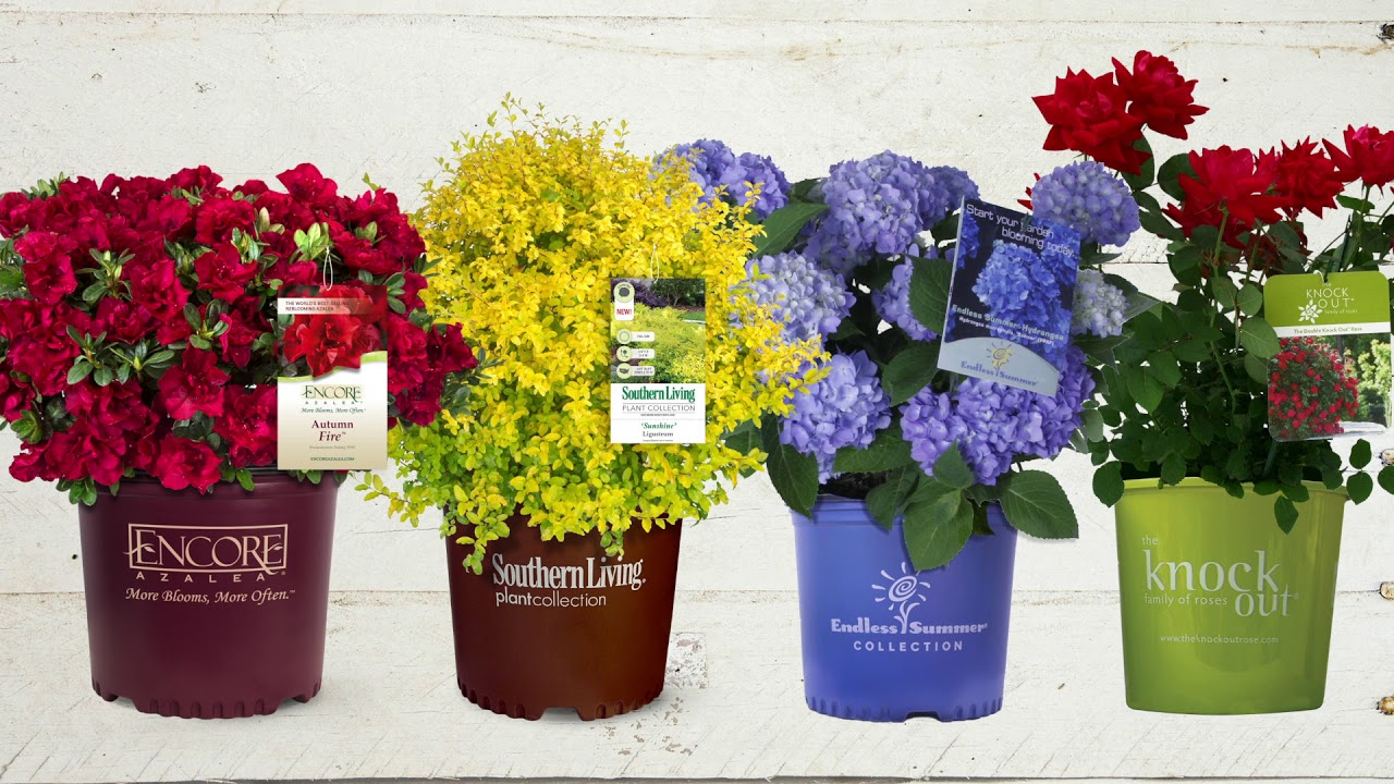 Homepage Flowerwood Nursery Inc