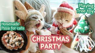 냥이와 크리스마스 파티! (고양이용 피자 만들기,트리 …