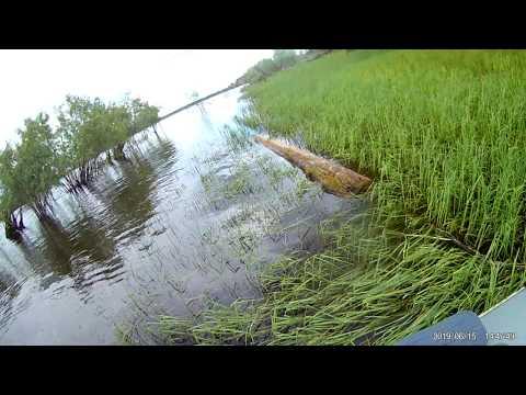 Рыбалка на р.Тавда 20190615