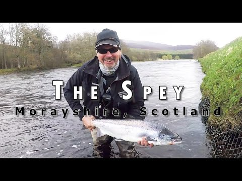 River Spey Scotland Spring Salmon At Tulchan 2018