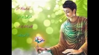 Tuyển tập nhạc hòa tấu Phật giáo không lời hay nhất [tĩnh tâm ,tự do ,tự tại ]
