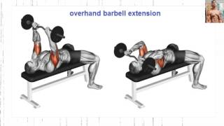 Bodybuilding Exercises/ Best Arms workouts For Mass