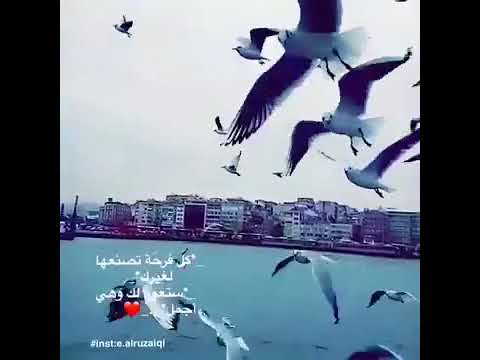 حبيبي صباح الخير أجمل حالات واتس اب Youtube