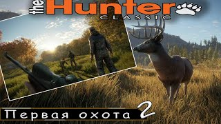 Первая охота 2 попытка, игра с подписчиками | The Hunter classic |